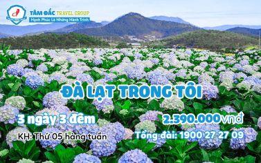 Tour du lịch Đà Lạt 3 ngày 3 đêm giá rẻ chất lượng